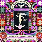 The Decemberists - What A Terrible World.jpg - 19.13 KB